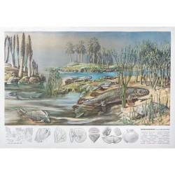 Jungpaläozoikum I (Devon-Süßwasserlandschaft)