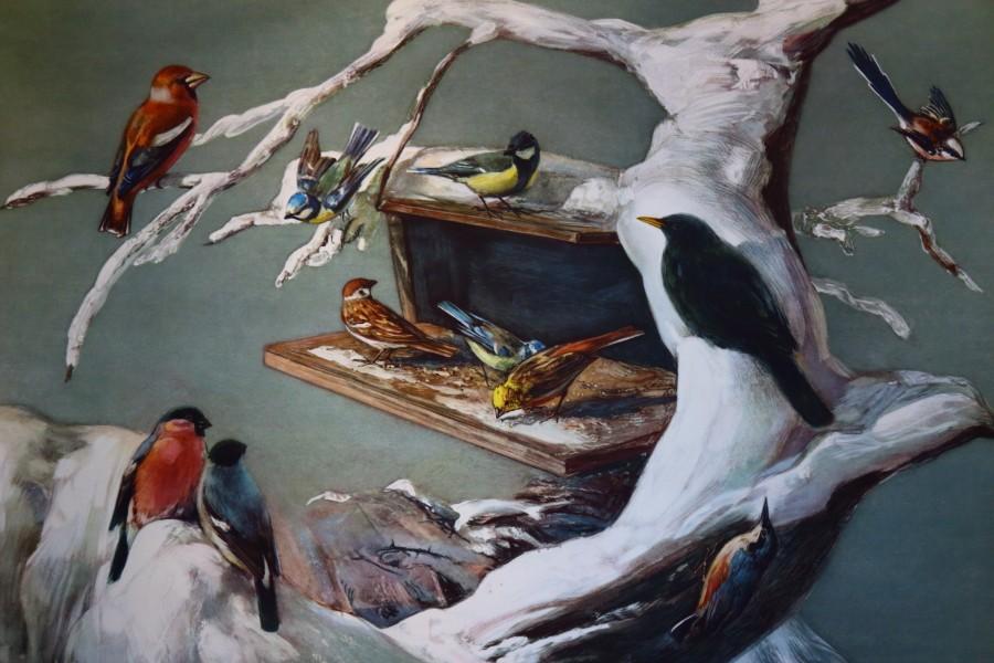 Vogelfutterhäuschen